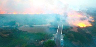 Brasil, incendio en Pantanal