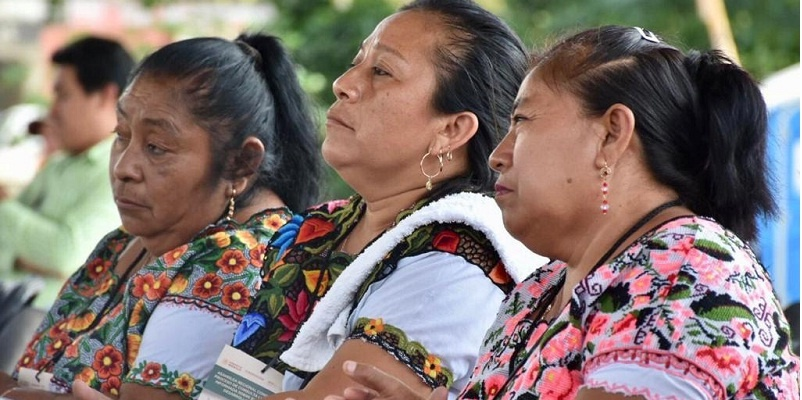 Tren Maya, la consulta