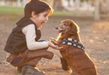 Tener una mascota durante la niñez disminuye riesgo de esquizofrenia