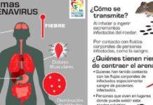 Brasil, investigan fiebre hemorrágica