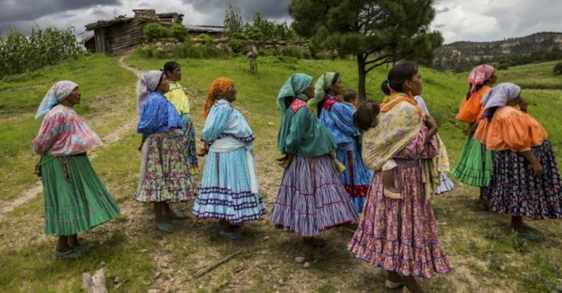 Identifican cambios genéticos en comunidades indígenas de México