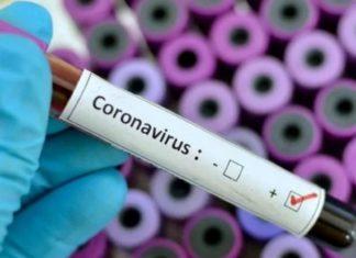 Vacuna contra coronavirus lista en 10 años, estiman