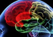 Riesgo de padecer demencia disminuye en personas bilingües