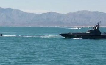 Pescadores atacan a personal de Profepa en reserva de la vaquita Marina